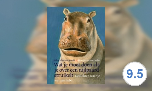 Wat je moet doen als je over een nijlpaard struikelt: gedichten waar je wat aan hebt