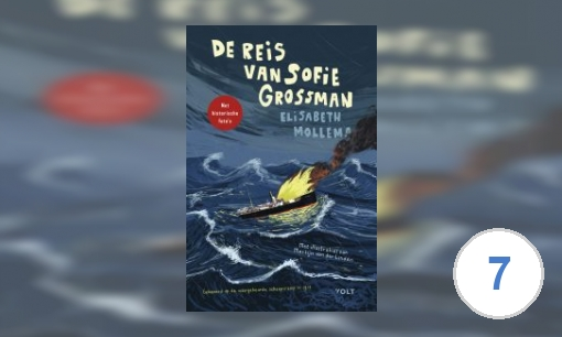 De reis van Sofie Grossman